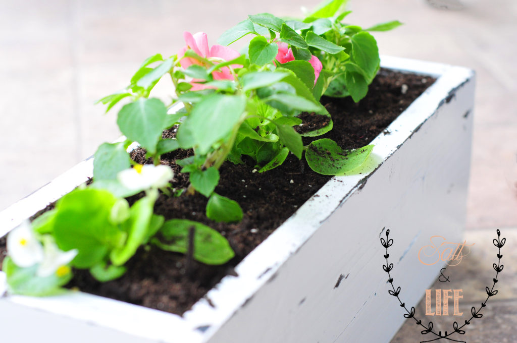DIY Pallet Planter Box with Flowers